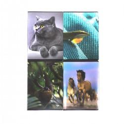 96K ZESZYT 96 KARTKI KRATKA MIX WZORÓW